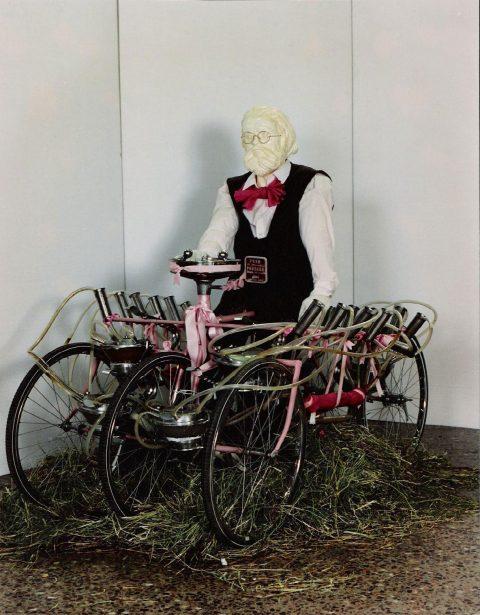 Bicyvache de Hollande